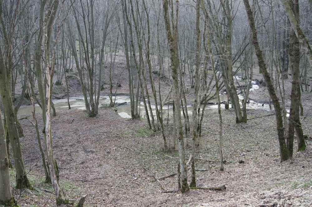 скачать игру маньяк в лесу - фото 11