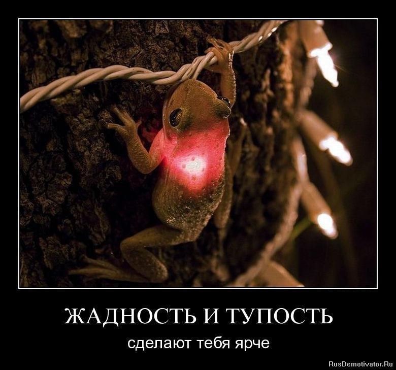 1302536047_ncyj0yml65zh