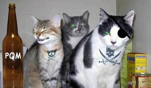 Коты смеются над Черданцевым